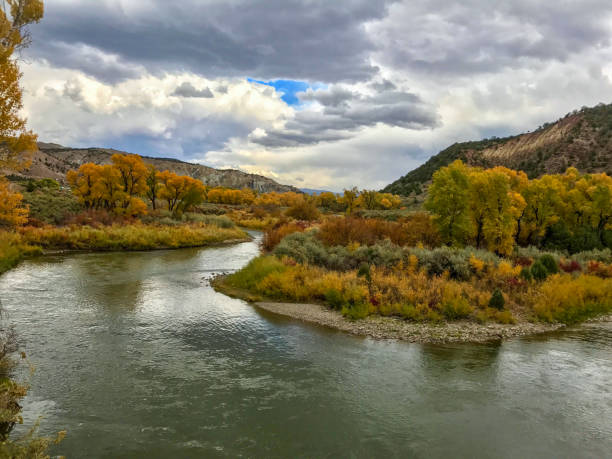 Fall River Bend Colorado River bend in the fall colorado river stock pictures, royalty-free photos & images
