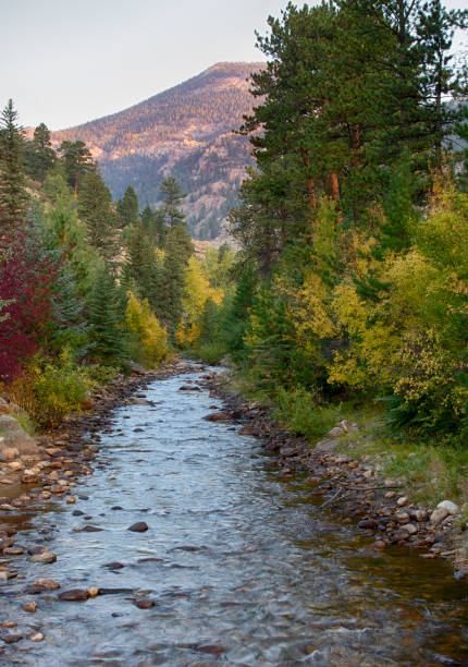 Fall River in Estes Park Colorado at Sunrise stock photo