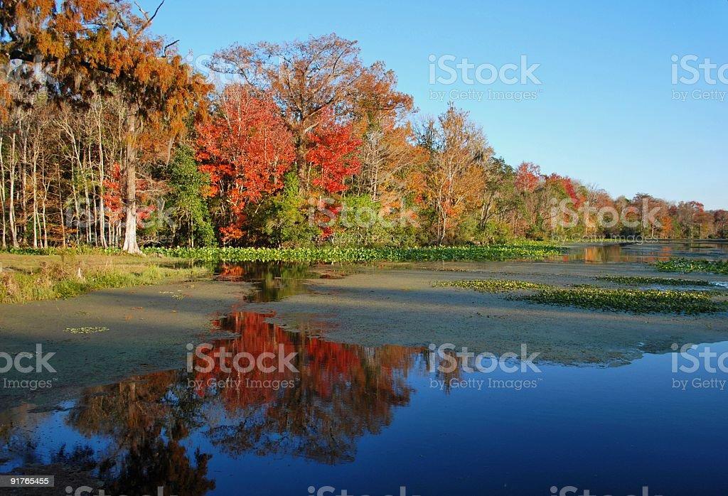 Fall River Scene royalty-free stock photo