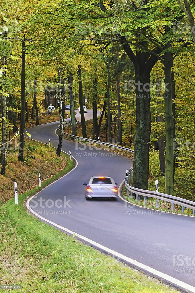 Fall road in forest royalty-free stock photo