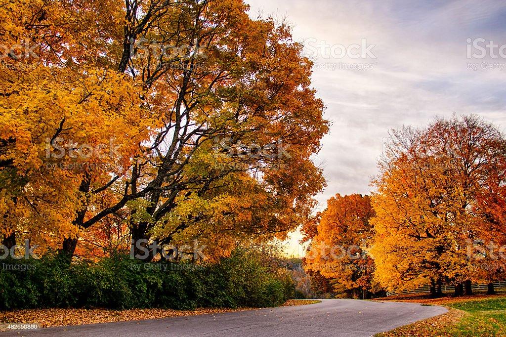 Fall Road stock photo