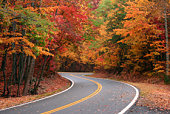 istock Fall S Curve 91032772