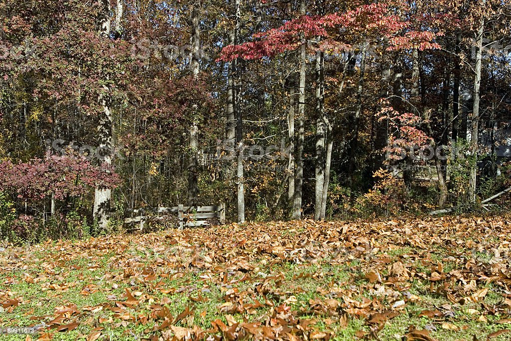 Fall scenic royalty-free stock photo
