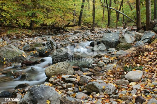 Fall scenics at Worthington State Forest of New Jersey