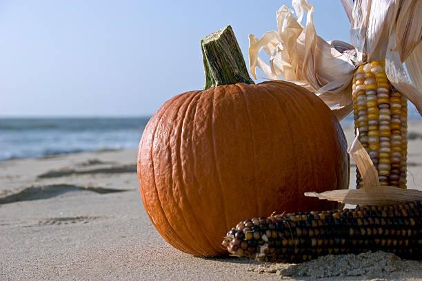 Fall Season Beach Party stock photo