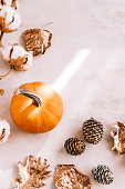 istock Fall season still life with pumpkin on white marble 860318498