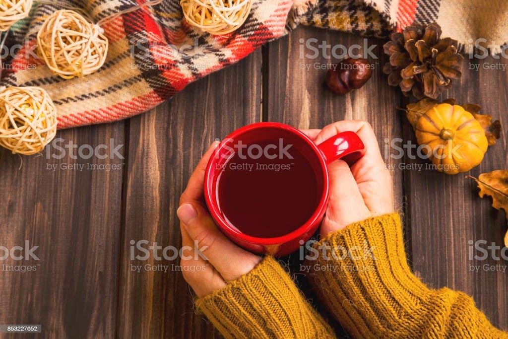 Manos de mujer de ajuste de caída con té caliente de la taza con manta caída vintage sobre fondo de madera y calabaza deco, flatlay otoño acogedor establecimiento - foto de stock