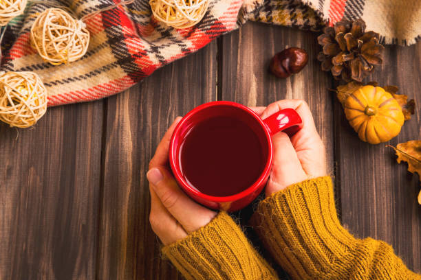 fall setting woman hands holding hot tea cup with vintage fall blanket on wooden background and pumpkin deco,cosy autumn flatlay setting - tea hot drink stock photos and pictures