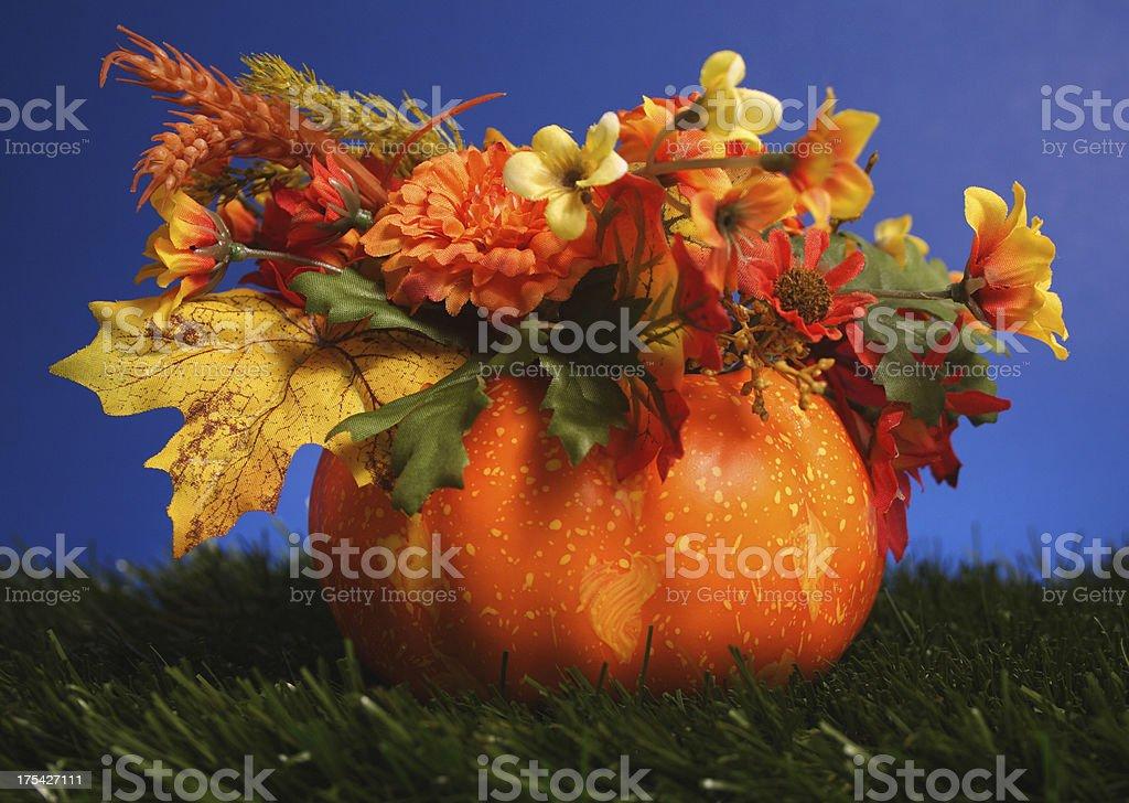 Fall Setup royalty-free stock photo