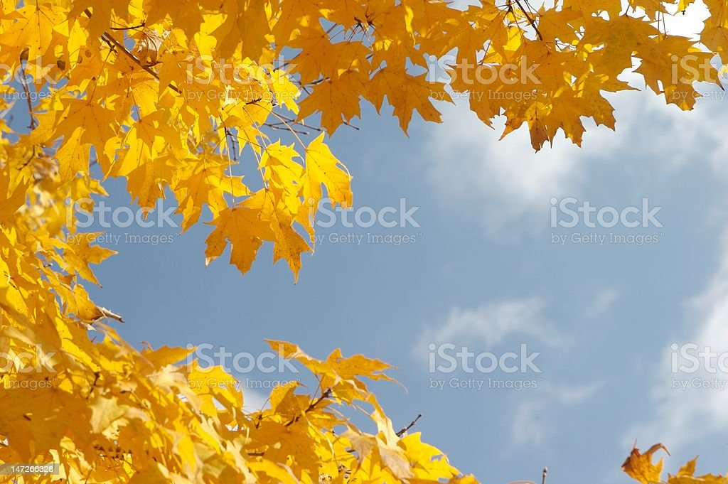 Fall Sky stock photo