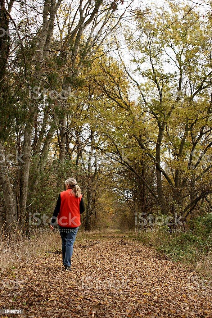 Się na spacer zbiór zdjęć royalty-free