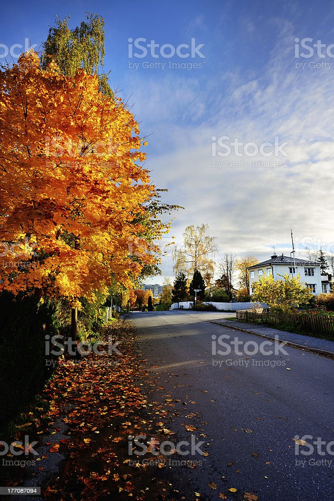 Fall, suburban street scene royalty-free stock photo