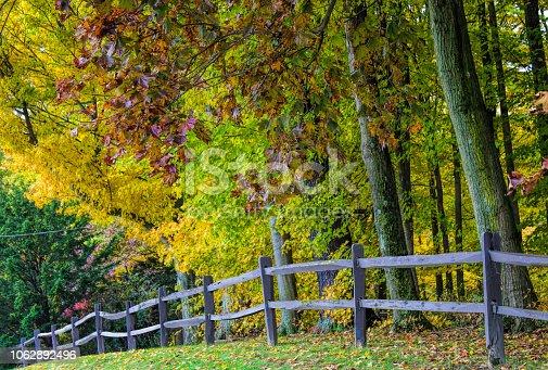 istock Fall tees in town 1062892496