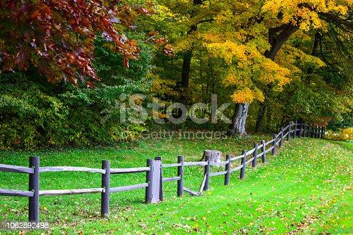 istock Fall tees in town 1062892498