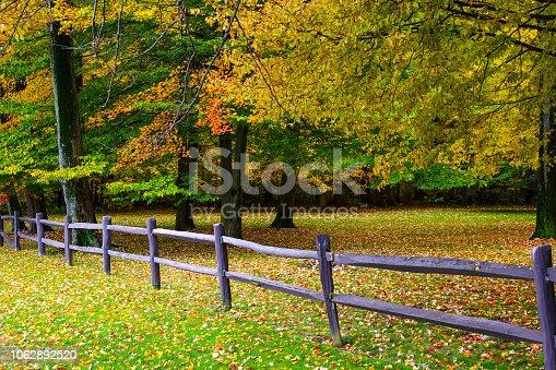 istock Fall tees in town 1062892520