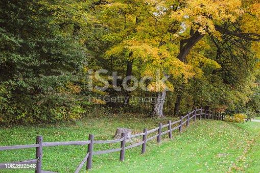 istock Fall tees in town 1062892546