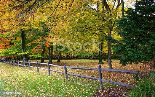 istock Fall tees in town 1062892696