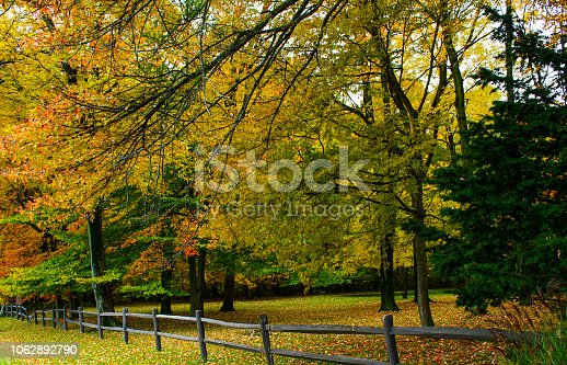 istock Fall tees in town 1062892790