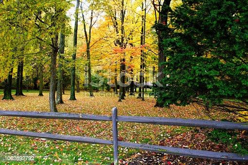 istock Fall tees in town 1062892792