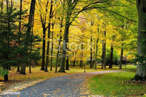 istock Fall tees in town 1062892808
