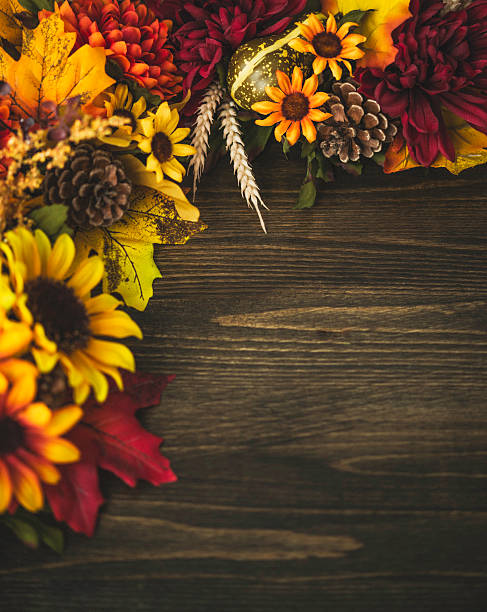 Fall Themed Decorations Forming Border On Wooden Background Thanksgiving Celebrations Stock Photo Sunflowers