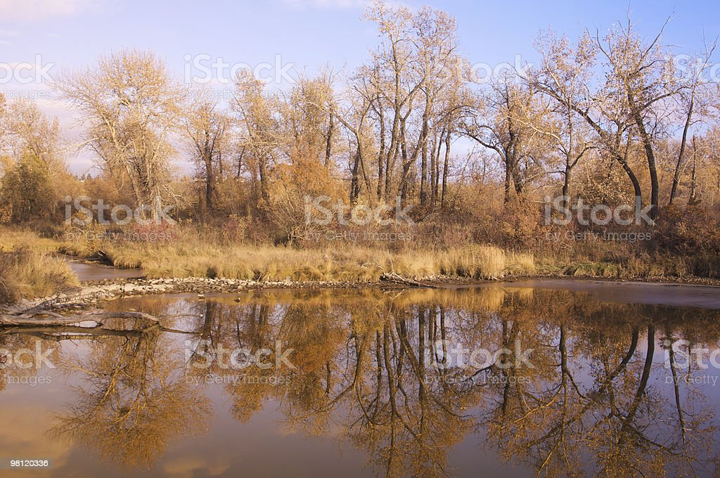 Fall time royalty-free stock photo