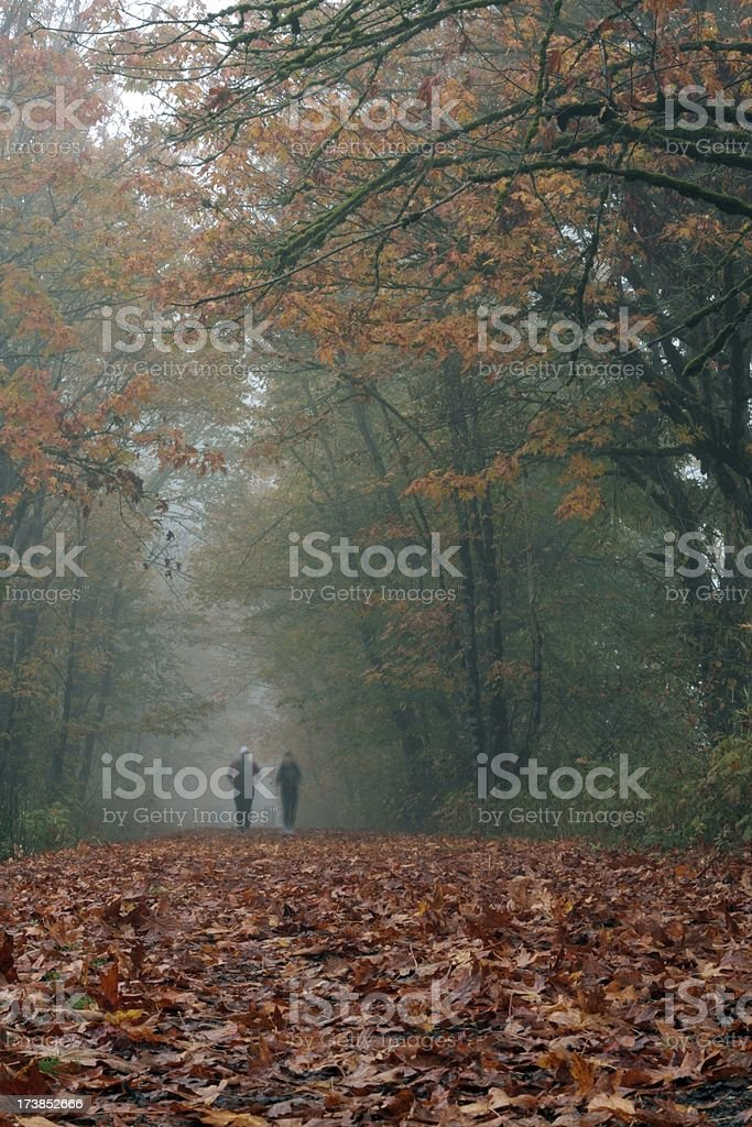 Fall Trail Runners royalty-free stock photo
