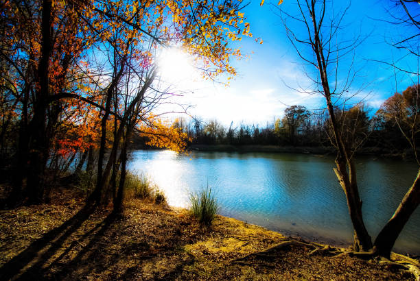Fall Trees Ablaze Sunset shines across river to backlight fall leaves. ablaze stock pictures, royalty-free photos & images
