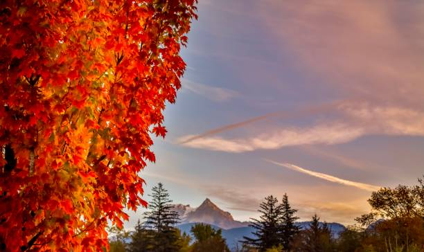 Fall views of Black Tusk Squamish stock photo