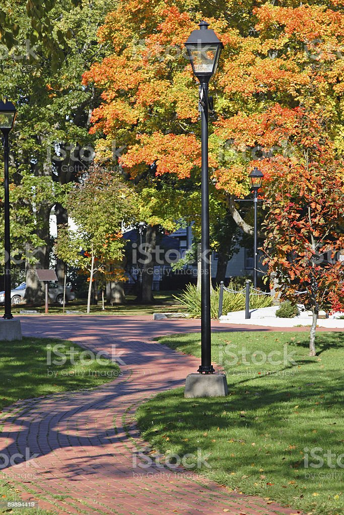 Fall Walkway royalty-free stock photo
