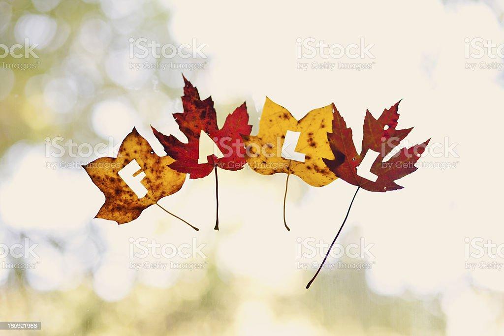 Fall Window Decoration royalty-free stock photo