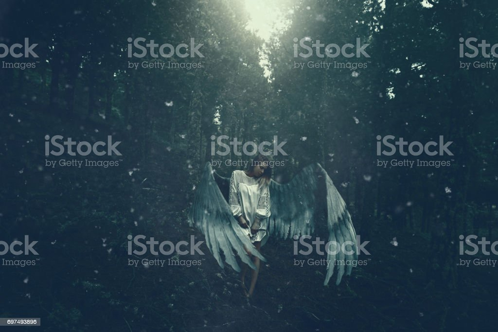 fallen angel in the winter forest stock photo