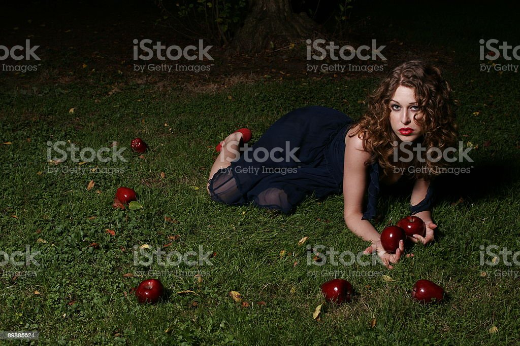 Fallen apples royalty-free stock photo