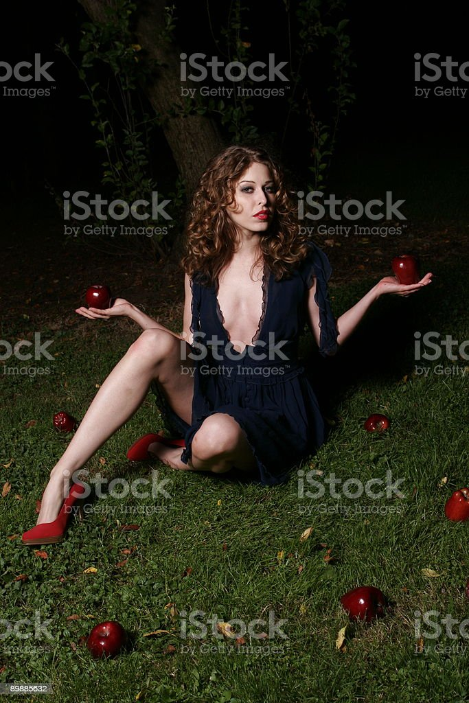 Fallen apples royalty free stockfoto