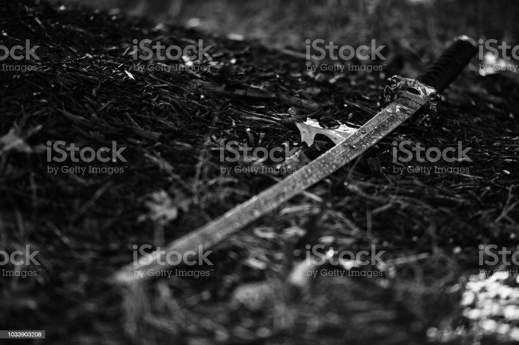 Fallen Katana stock photo