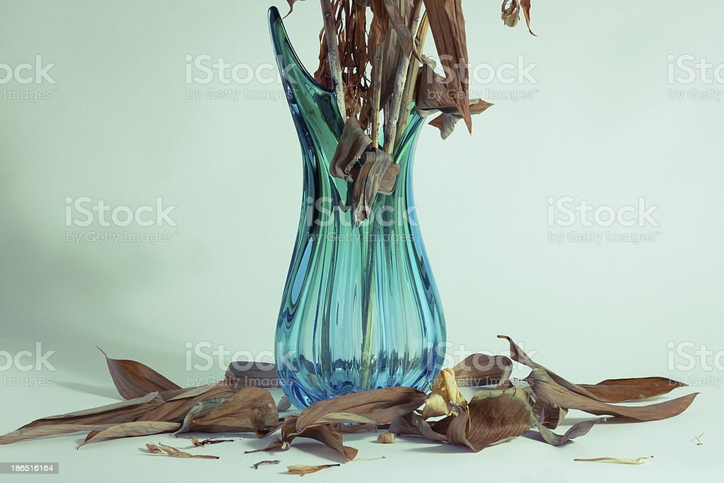 Fallen leaves around a vase royalty-free stock photo