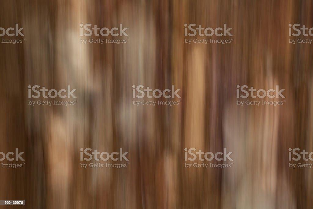 떨어진된 잎 바닥에 누워. 추상 모션 흐림 효과 - 로열티 프리 0명 스톡 사진
