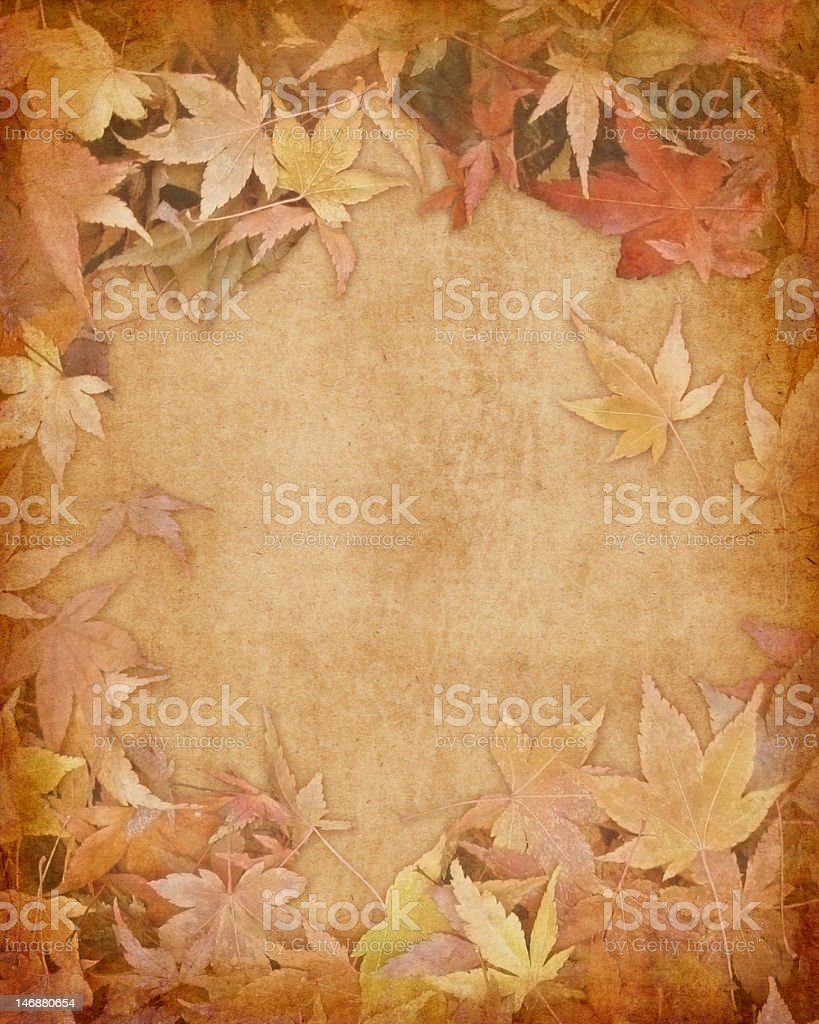 Fallen Leaves Paper stock photo