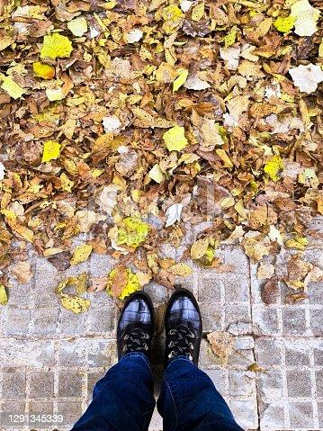 istock Fallen leaves 1291345339
