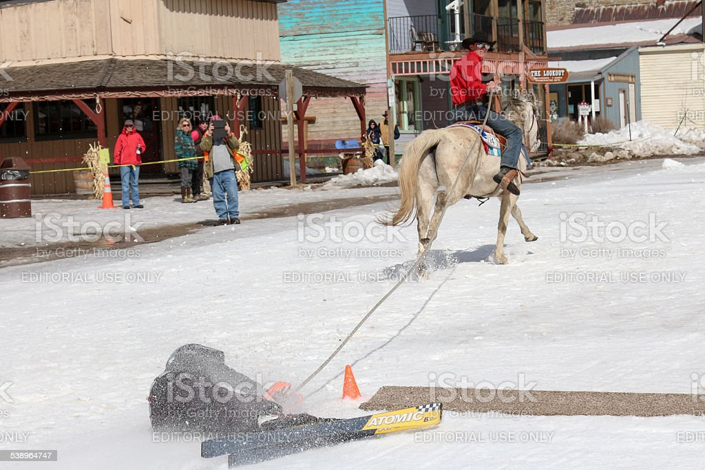 Fallen skier being pulled over the finish line while Skijoring stock photo