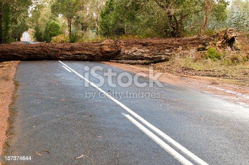 istock Fallen Tree Blocking the Road 157374644