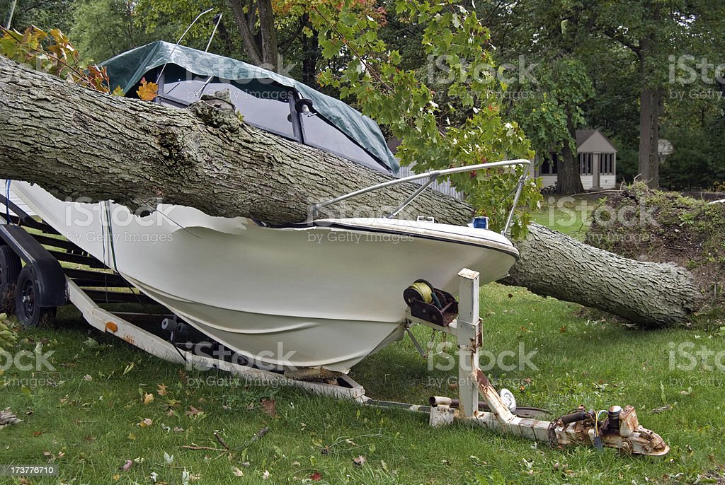 fallen tree on power boat royalty-free stock photo