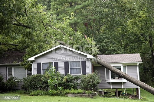 Tree that has fallen on a house during a severe storm [url=file_closeup.php?id=17576193][img]file_thumbview_approve.php?size=1&id=17576193[/img][/url]  [url=http://www.istockphoto.com/file_search.php?action=file&lightboxID=3990307] [img]http://i292.photobucket.com/albums/mm29/jcookephoto/constructionlblink.jpg[/img][/url]