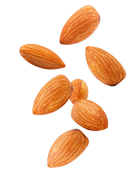 falling almond isolated on white background, clipping path, full depth of field - amendoas imagens e fotografias de stock