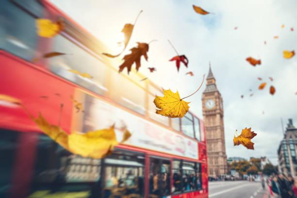 fallende blätter im herbst in london - englandreise stock-fotos und bilder