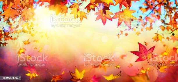 Falling autumn red leaves with sunlight fall background picture id1035136578?b=1&k=6&m=1035136578&s=612x612&h=afphqt u8p8 gofpnxxg5kmk 2qxnct6bbtmtg7tbvi=