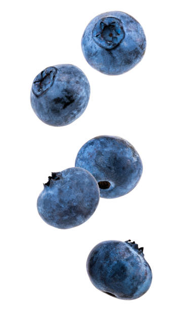 falling blueberries isolated on a white background - blueberry stock pictures, royalty-free photos & images