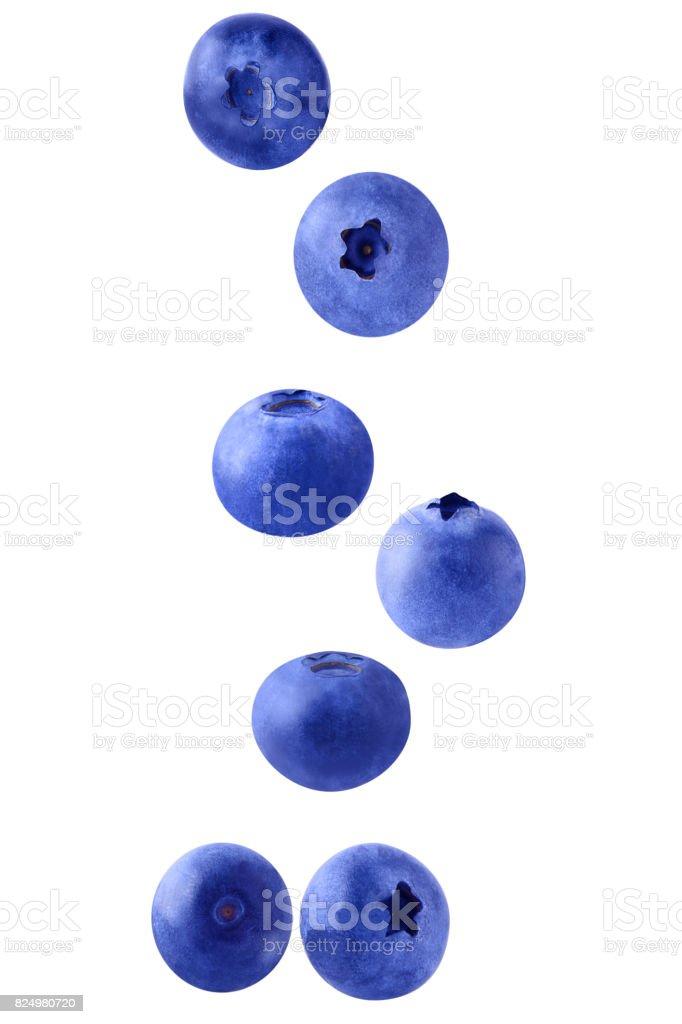 Falling blueberries on white - foto stock