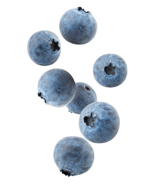 falling blueberry, clipping path, isolated on white background, full depth of field, high quality - blueberry stock pictures, royalty-free photos & images