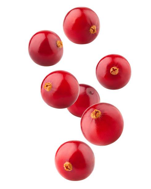 caída arándano rojo aislado sobre fondo blanco, trazado de recorte, profundidad de campo - arándano rojo fruta baya fotografías e imágenes de stock